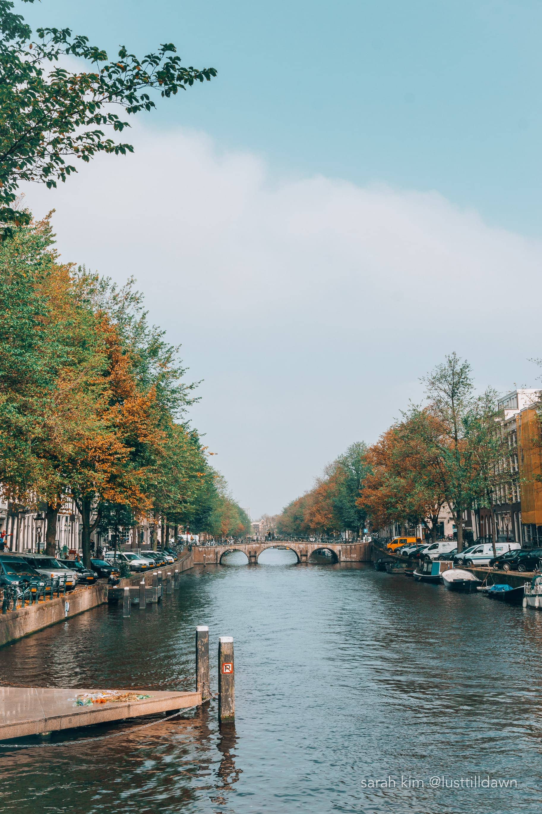 best things to do in amsterdam local amsterdam guide