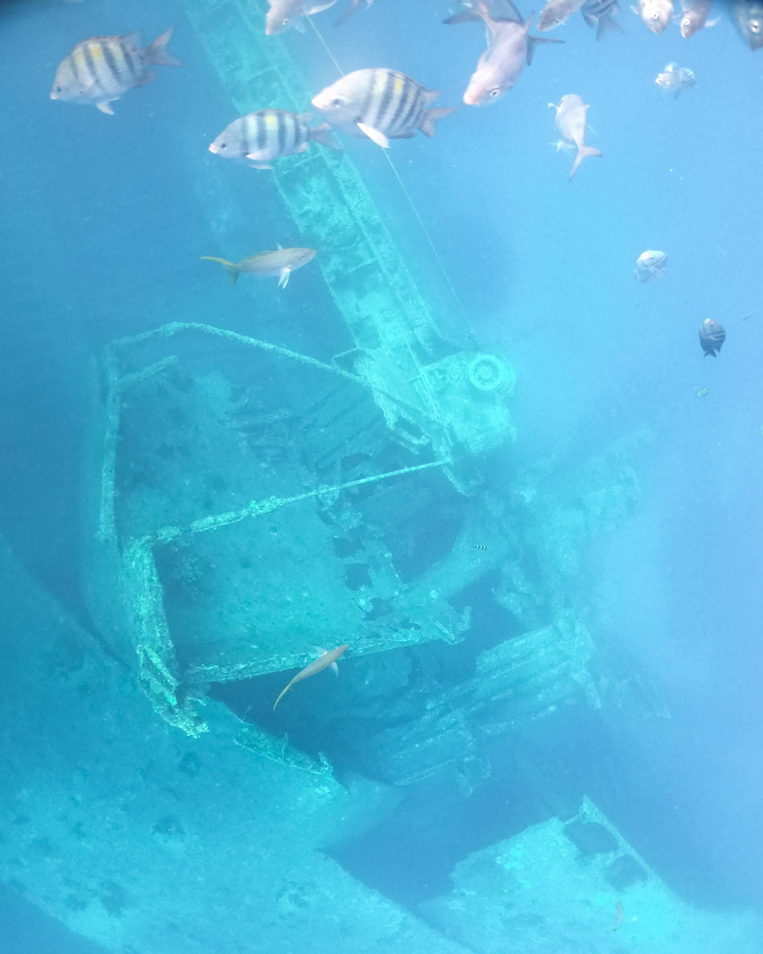 ss antilla shipwreck underwater off the coast of aruba